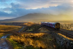 A train approaches Ribblehead Viaduct